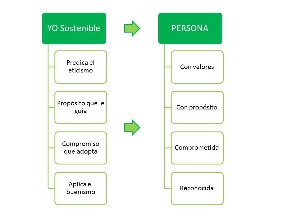 n21_el-yo-sostenible-contribucion